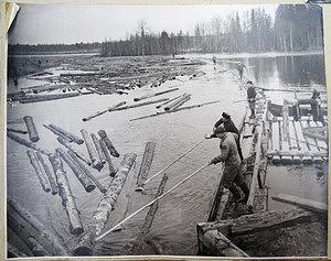 Сплав леса по реке Суна, 1950-60е гг.