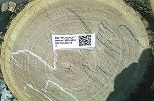Рис. 1. Пример маркировки бревна