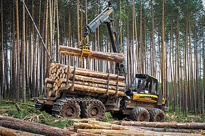 Форвардер Ponsse на участке лесозаготовки
