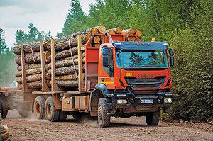 Вывозка древесины сортиментовозами Iveco