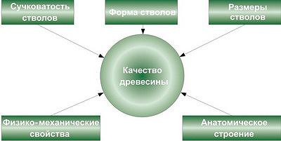 Рис. 1. Модель методологии исследования качества древесины