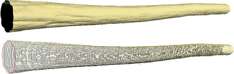 Рис. 4. Результаты оценки размеров бревен с использованием 3D-сканера
