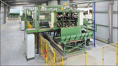 Рис. 6. Предприятие по производству дров, оснащенное тремя высокопроизводительными линиями Pezzolato