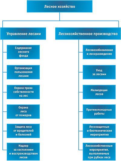 Состав лесохозяйственной деятельности