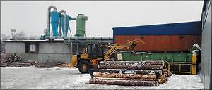 Подача пиловочника в лесопильный цех