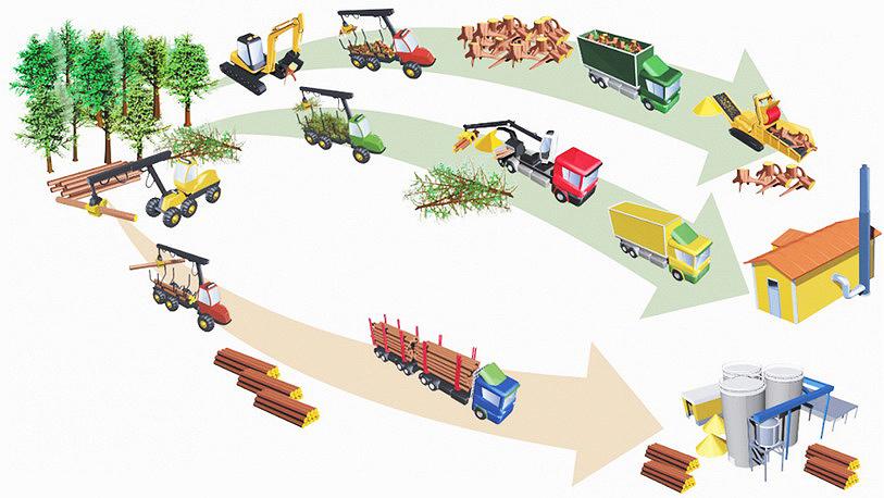 Рис. 4. Для производства «зеленой» энергии в Финляндии используется не только древесина, заготавливаемая при рубках ухода и прореживаниях