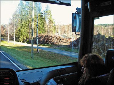 Рис. 7, 8, 9. Типичная картина в лесах Финляндии: энергетическая древесина, сложенная для просушки вдоль дорог