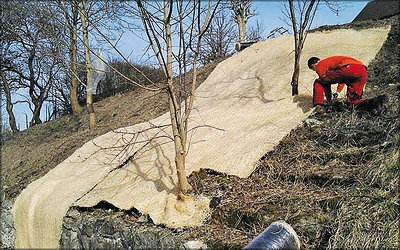 Рис. 4. Использование матов из древесной шерсти Howolis швейцарской фирмы Lindner для защиты склонов и укутывания растений