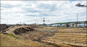 Крановое оборудование на участке приемки и отгрузки круглых лесоматериалов