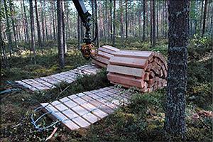Рис. 3. Первый протестированный деревянный мат