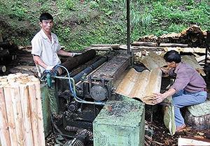 Рис. 1. Производство шпона на типичном китайском деревенском заводике