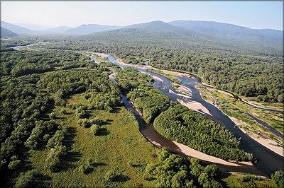 Малонарушенные леса в бассейне реки Самарги, Приморский край