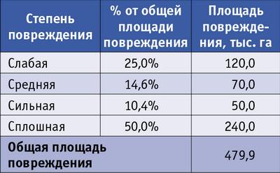 Таблица 2. Масштабы повреждения сибирским шелкопрядом в 90-х годах