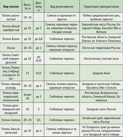 Таблица 1. Основные виды тополя, распространенные на территории России