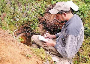Почвовед-ландшафтовед Артем Столповский проводит почвенный разрез для определения структуры почвы