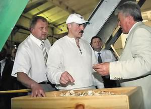 Александр Лукашенко во время посещения ОАО «Ивацевичдрев»