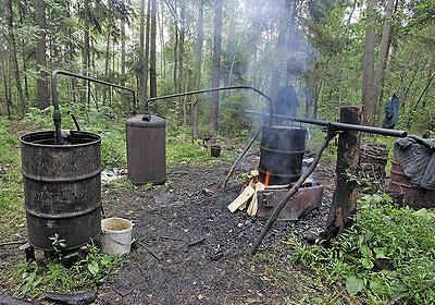 Процесс пошел... Самогонный аппарат в белорусском лесу