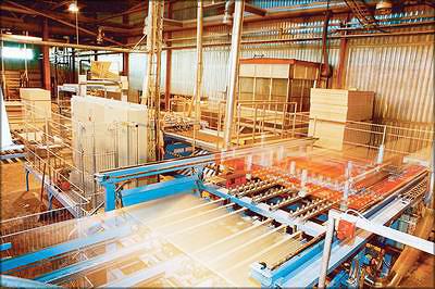 «UPM Чудово». Финская компания UPM Group эксплуатирует один из самых современных заводов по производству березовой фанеры в Новгородской области
