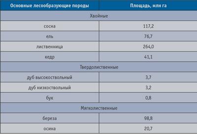 Таблица 4. Площади основных лесообразующих пород в РФ