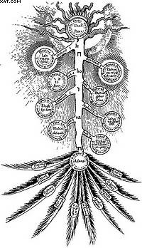 Перевернутое дерево. Гравюра из книги Р. Флудда «Священная философия и христианская вера». 1626 г.