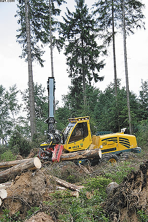 Харвестер HSM разбирает лесной завал, оставшийся после урагана «Кирилл»