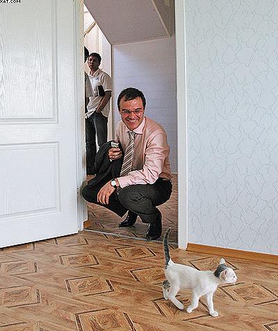 Рис. 3. Внутреннее и внешнее убранство домов в Ростовской области