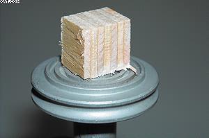 Образец фанеры для получения среза на микротоме