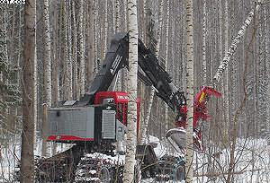 1 этап. Заготовка леса с помощью валочно-пакетирующих машин TimberPro. Можно применять как колесные, так и гусеничные машины в зависимости от условий эксплуатации