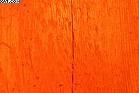 Рис. 5. Фотография более светлого участка пиломатериала