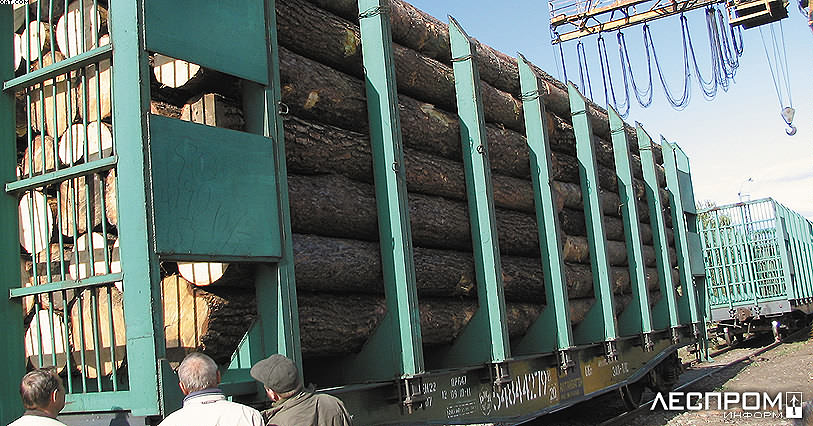 Российский лесной сектор