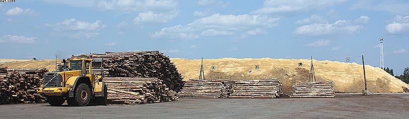 Склад сортированных лесоматериалов и зимний склад (на заднем плане)