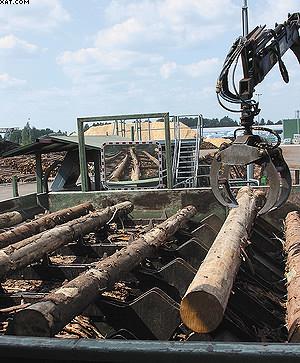 Линия сортировки лесоматериалов