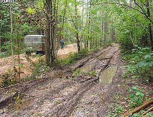 Фото 2. Слева дорога, построенная с применением материала Typar, справа − без его использования