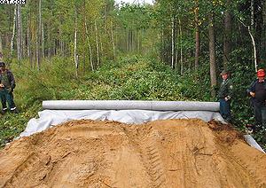 Фото 3. «Тело» лесной дороги укладывается на геотекстиль Typar