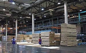 Участок производства тонкого и конструкционного шпона на «UPM Чудово»