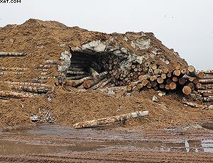 Зимний склад хранения фанерного сырья на «UPM Чудово»