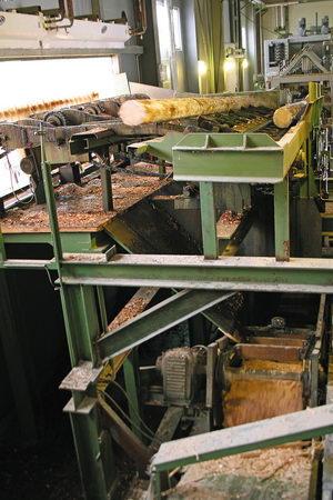 Подача бревен в лесопильный цех