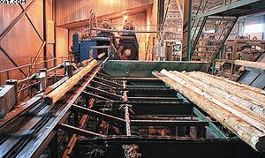 Окорочный станок и подача бревен на лесопильную линию