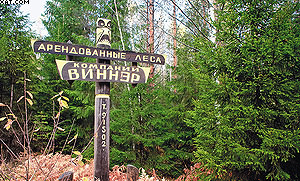 Леса компании «Виннэр» в Выборгском районе Ленинградской области