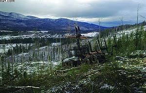 Форвардер Logset 10F
