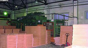 На ЛПИ высоко оценивают эффективность работы линии форматирования и линии кромкооблицовки компании IMA (Германия)