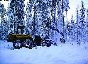 Форвардеры Ponsse позволяют добиваться отличных результатов на заготовке леса