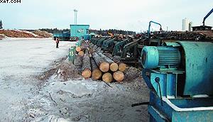 Линия сортировки круглых лесоматериалов