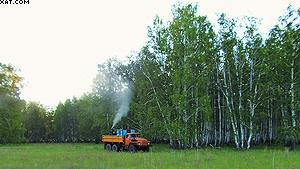 Обработка лесов от вредителей