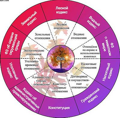 Рис. 1. Схема взаимосвязи различных отношений в лесном хозяйстве, регулируемых соответствующими отраслями законодательства