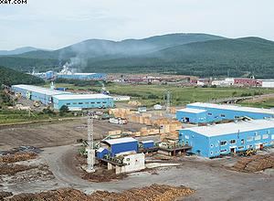 Промышленный центр деревообработки в Пластуне