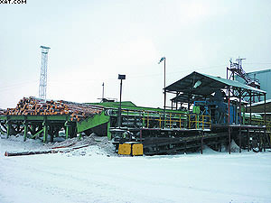 Узел подачи пиловочника на Малиновском лесопильном заводе