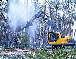 Харвестер Volvo на лесной делянке