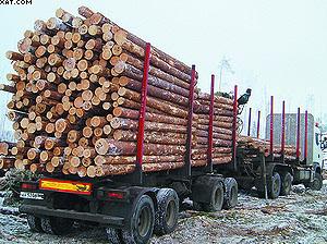 Лесовоз-сортиментовоз на базе техники Volvo