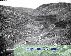 Рис. 1. Менее чем за сто лет эта земля совершенно преобразилась